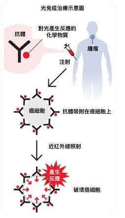 ICG Liposome.jpg