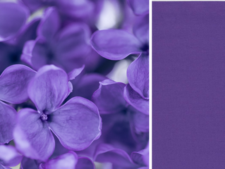 Pantone's 2018 Fall Color Trends