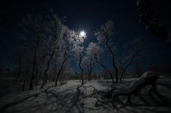 Clair de lune - Ile de Senja