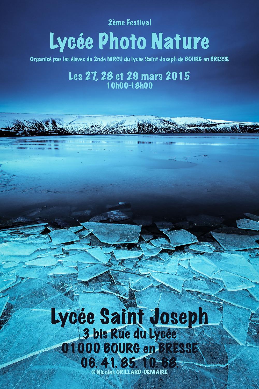 LPN 2015 Affiche.jpg