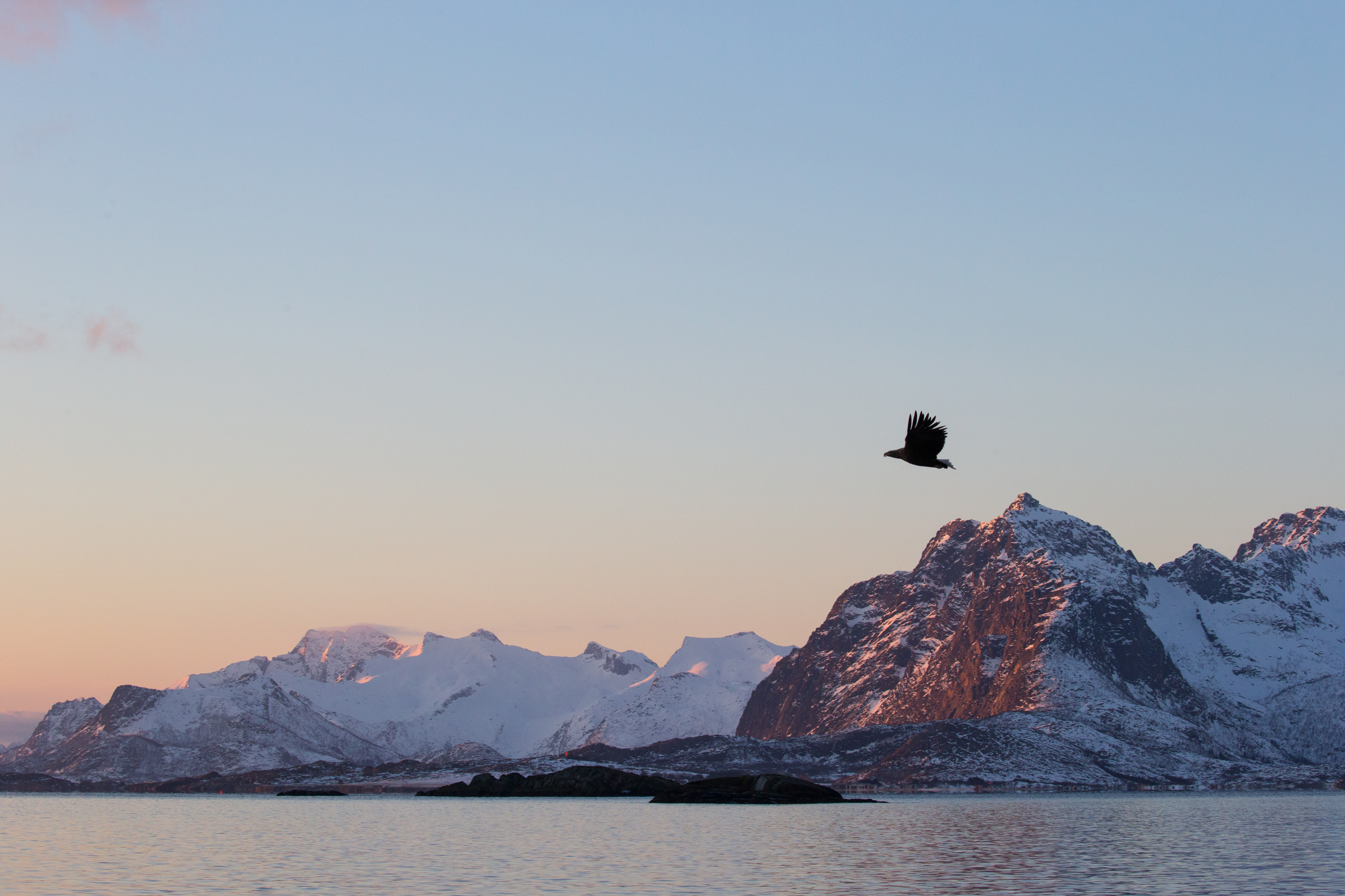 Lofoten 2018 - David Wolberg