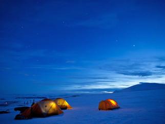 Voyage au Dovrefjell national park