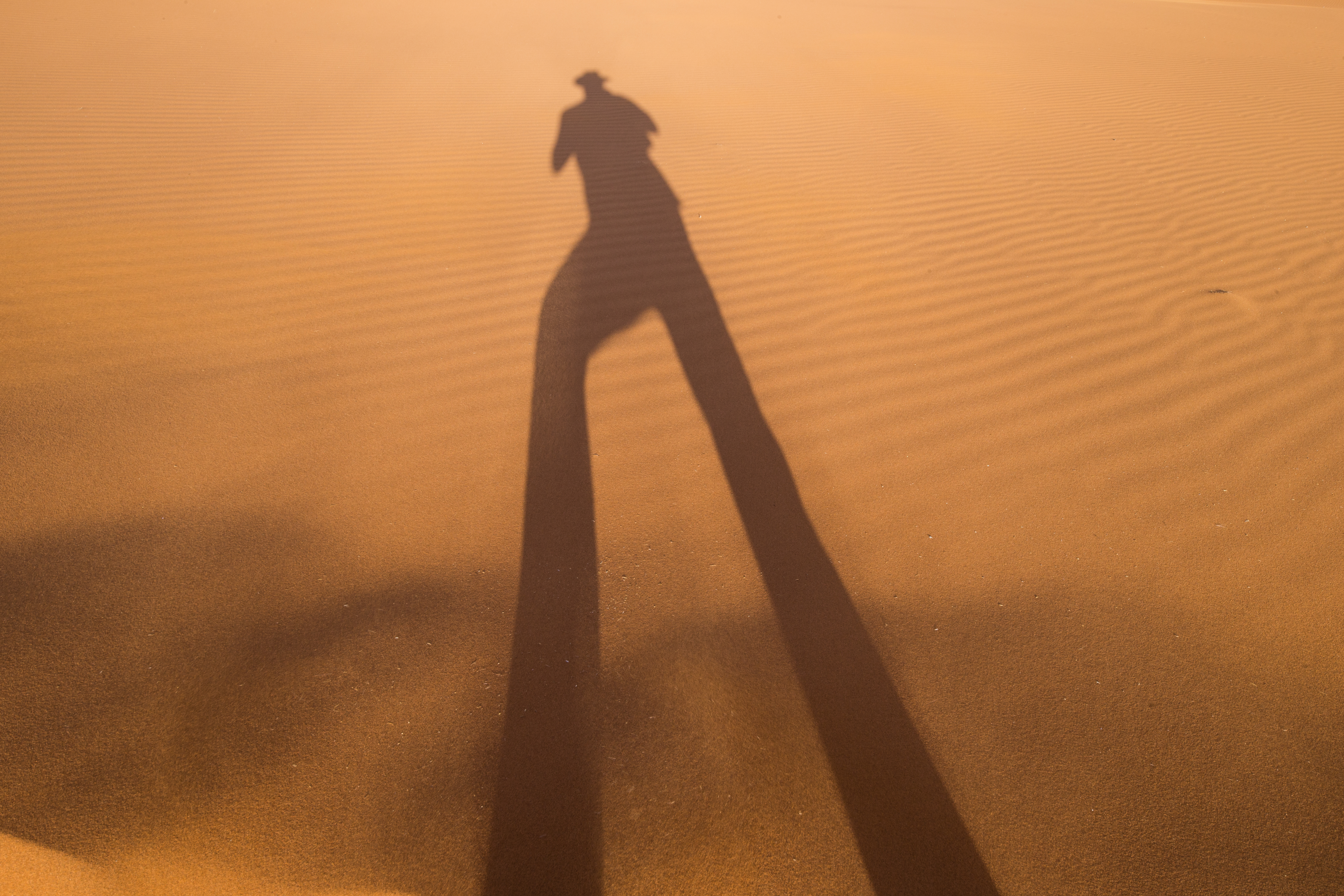 Autoportrait Namibie - David Wolberg