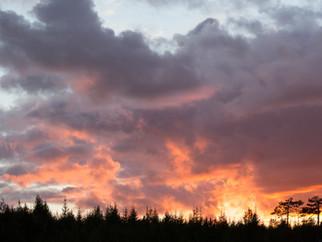 FINLANDE aout-septembre 2014