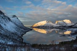 Fjord Ile de Seja Norvège