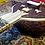 Thumbnail: Nitai Chandra Nath Surbahar