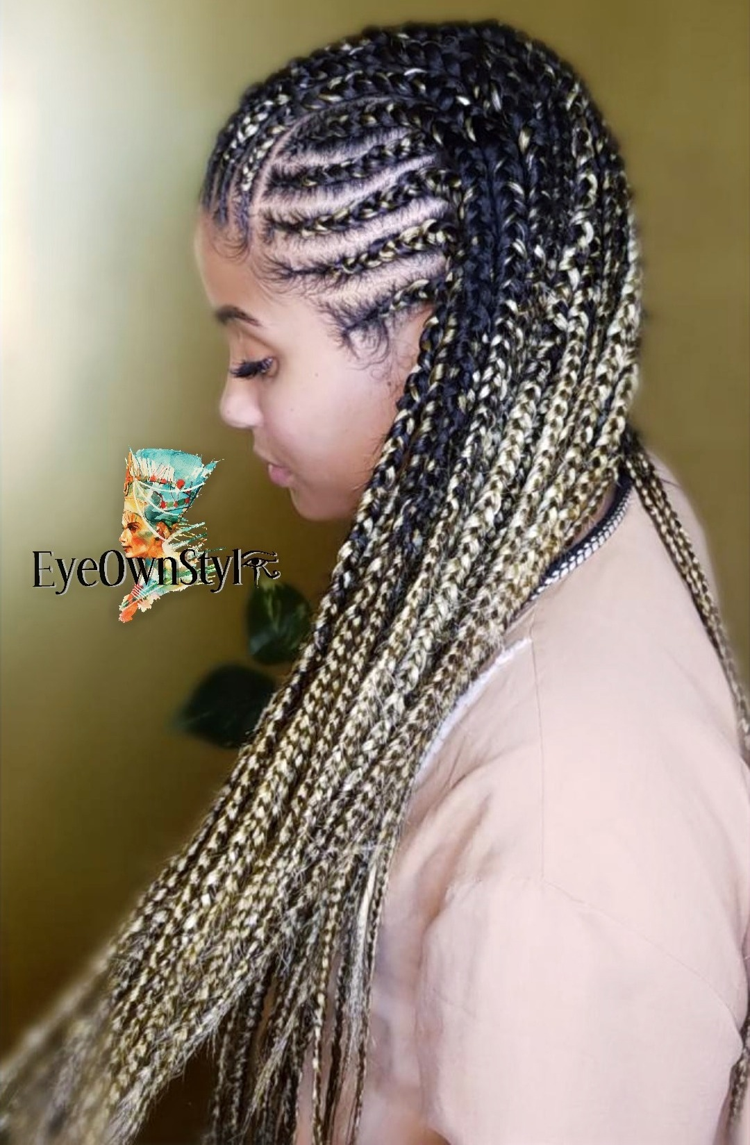 Two Layer Braids