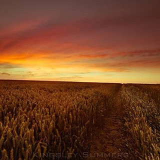 The long way 'round_#sunset #yorkshire #