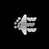 hepa icon.png