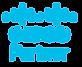 Cisco%20partner-blue_edited.png