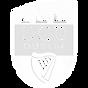 University-College-Dublin-AFC-Logo-UCD-D