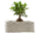 IMG_9983-pot-fleur-constructions-3D-mach