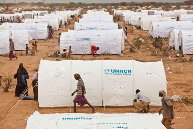 Habitat insalubre camp réfugié