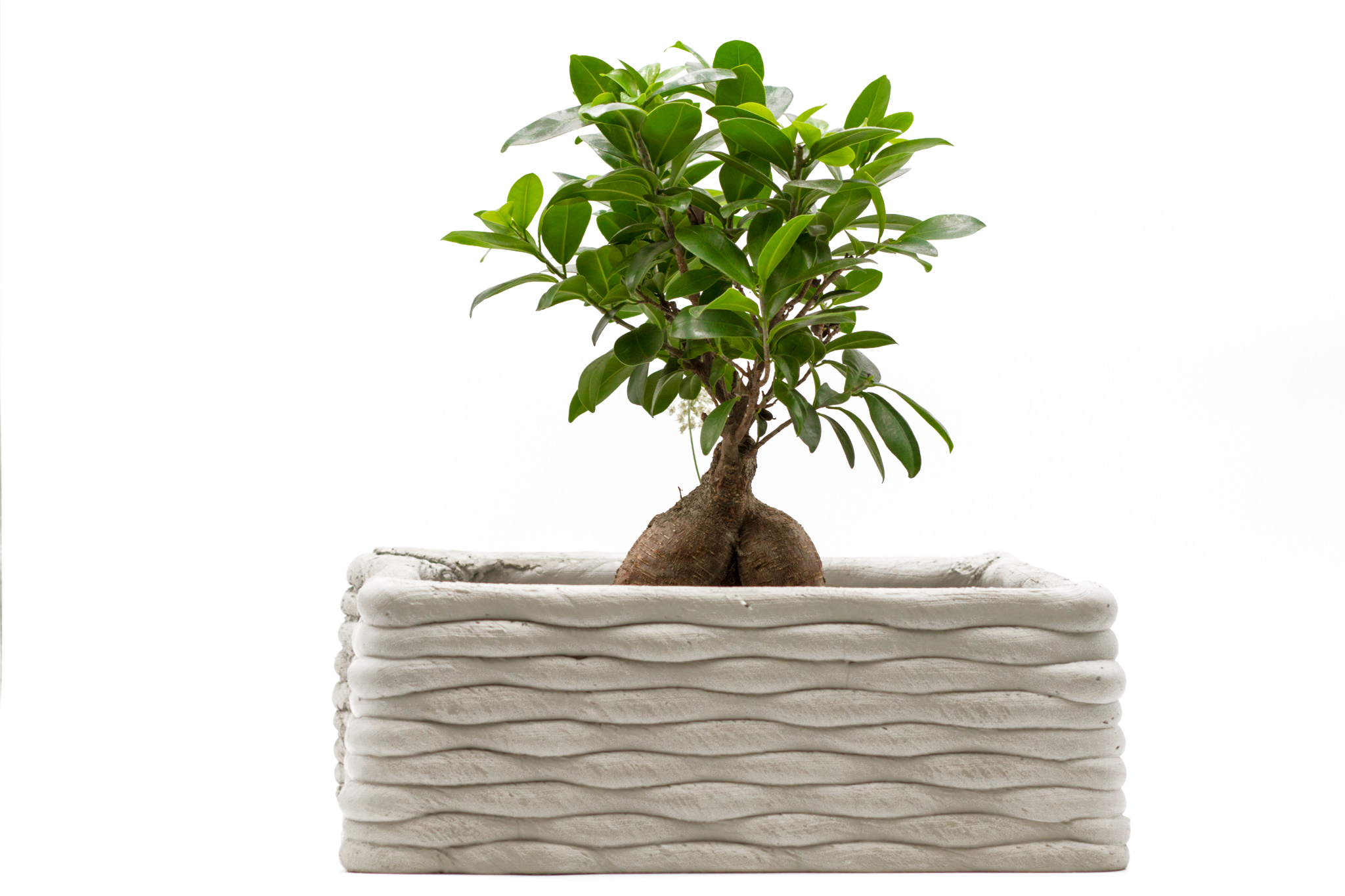 Pot pour plante carré