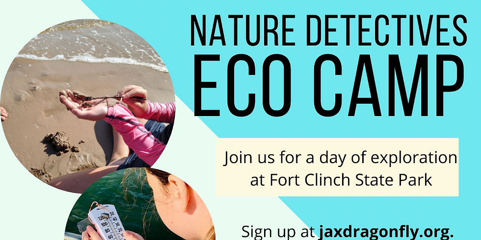 Nature Detectives: Eco Camp