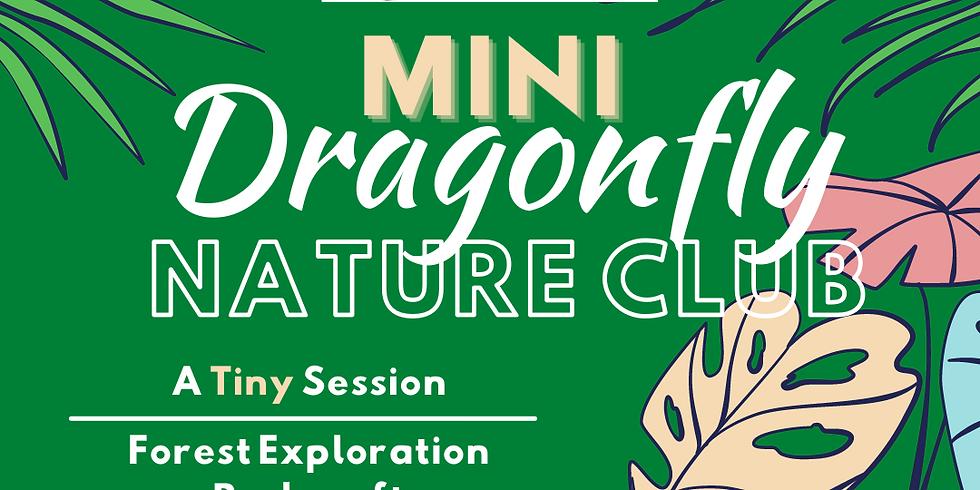 Mini Dragonfly Nature Club | Session 3 | Arlington Explorers