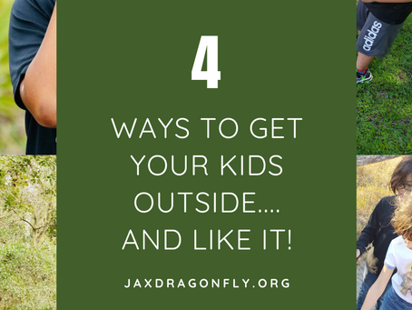 4 Ways to Get Your Kids Outside...And Like It!