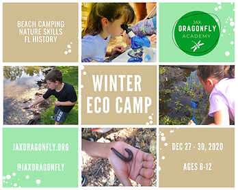 Winter Camp Ad.png