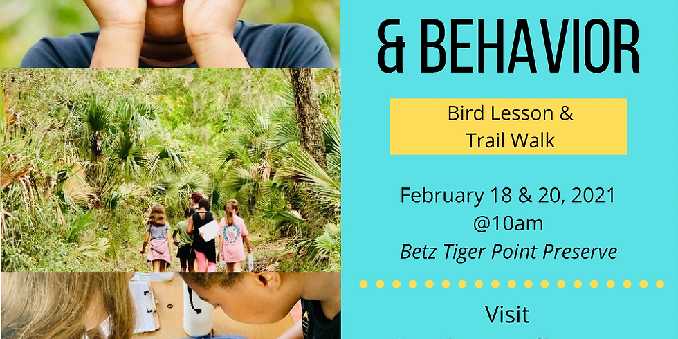 Birdwatching & Behavior | Nature Detectives 2/20