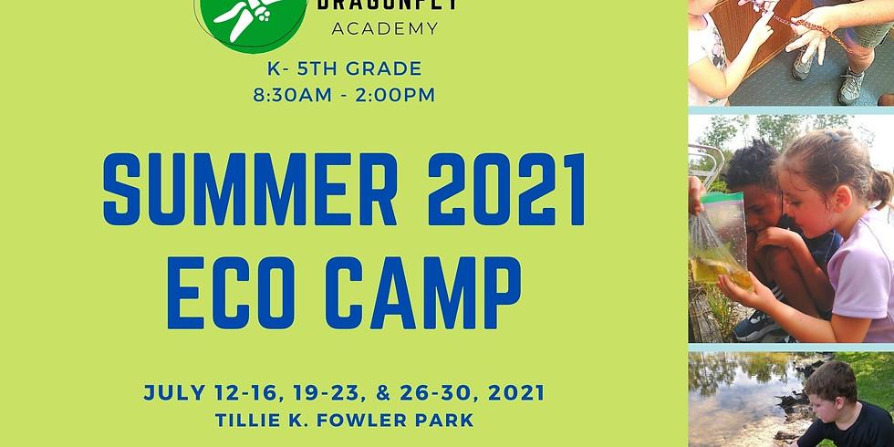 Summer Eco Camp 2021