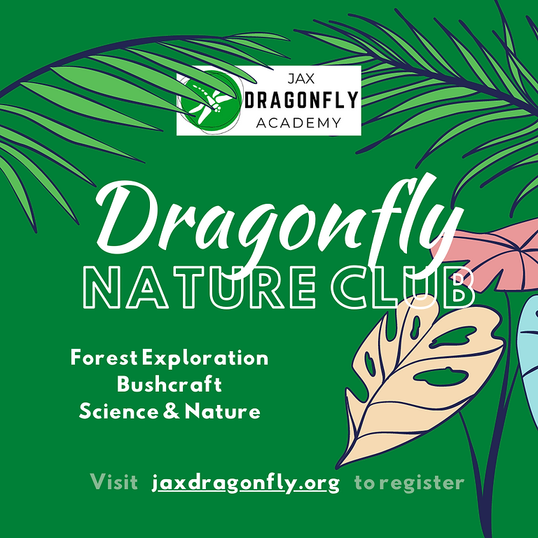 Dragonfly Nature Club | Duval | 3rd Wednesday Morning