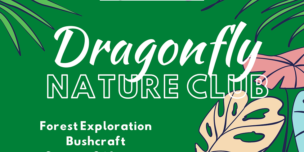 Dragonfly Nature Club | St.Johns | 3rd Thursday Morning
