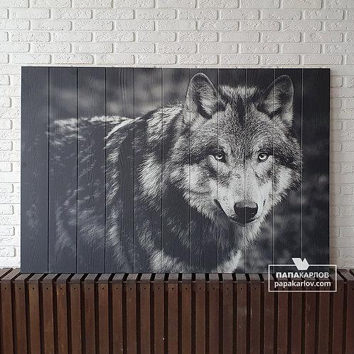 "Картина на досках ""Волк 2"""