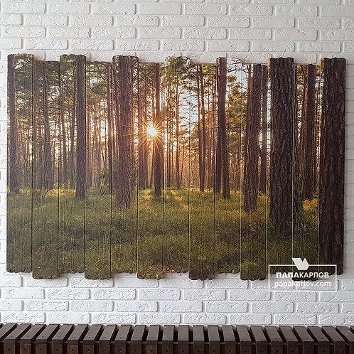 """Картина на досках """"Лес 2"""""""