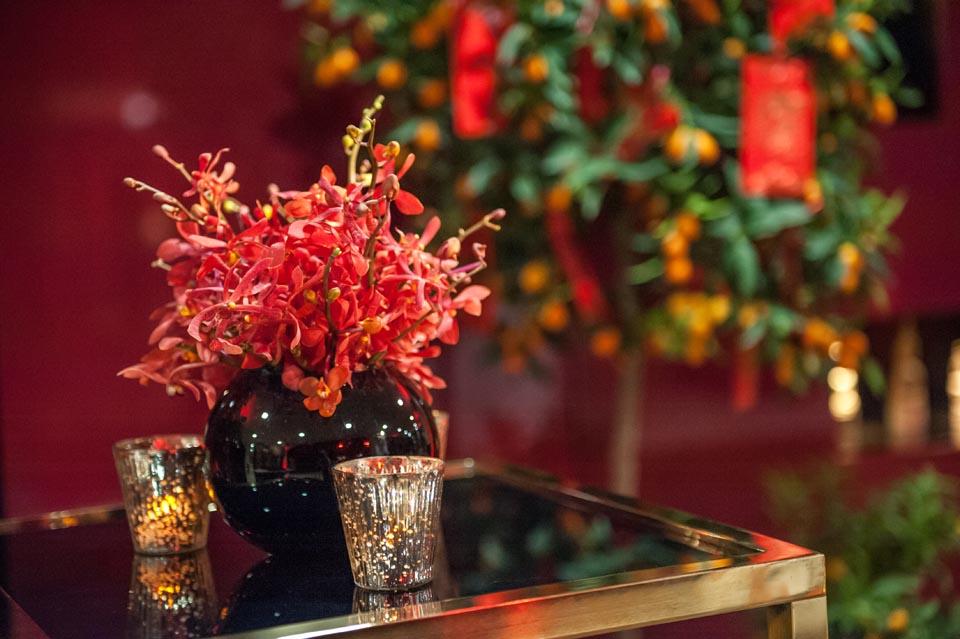 Firey Orchids