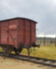 07_2019_Cracovie_Papa_Auschwitz_Mine de