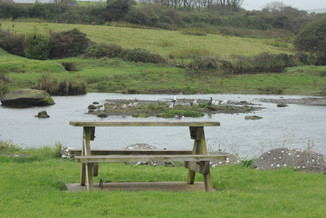 Irlande_Celiabellut_Paysage_Dingle