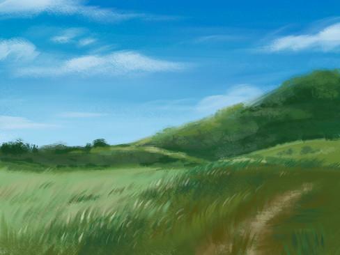 Martinez Hills 1