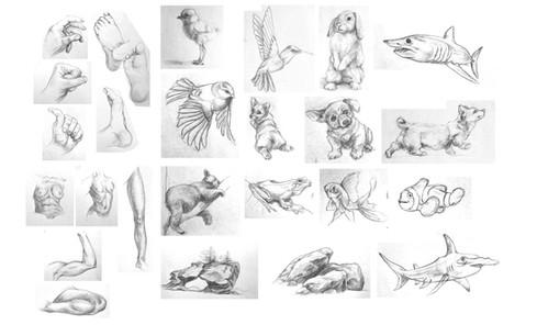 Dynamic Sketching highlights