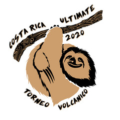2020 Volcanic Tournament