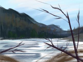 Upstate NY Lake