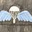 Thumbnail: WWII British Parachute Wing