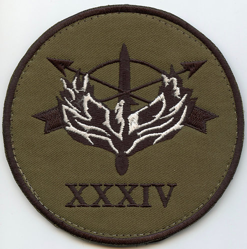ODA-2034 20th Special Forces Group Patch