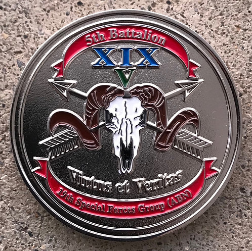 5th Battalion 19th Special Forces Group Coin