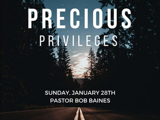 Precious Privileges