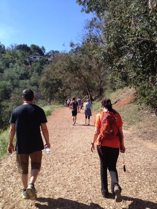Company hike