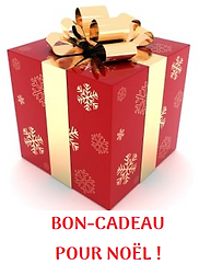 Bouton bon-cadeau.png