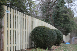 Privacy Pine Fence