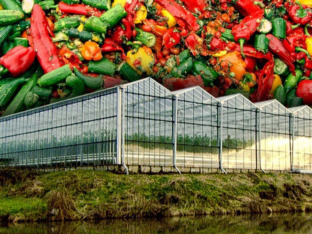 How Food Waste is Helping Power Greenhouses | Earth Lab