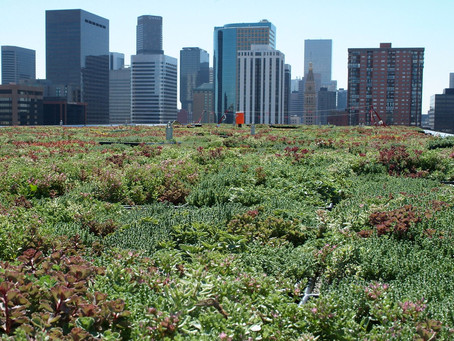Stormwater Management Practices at EPA Facilities