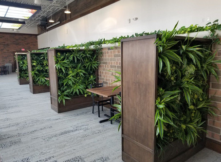 Making Social Distancing Green: Adding Living Walls, Potted Plants to Restaurants