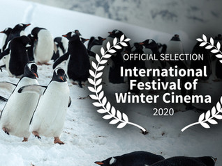 An Official Selection at the Int'l Festival of Winter Cinema!