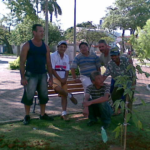 Praça Campo Galvão - Plantio Reflorestar é Viver