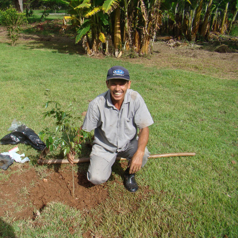 Seminário Bom Jesus - Plantio Reflorestar é Viver