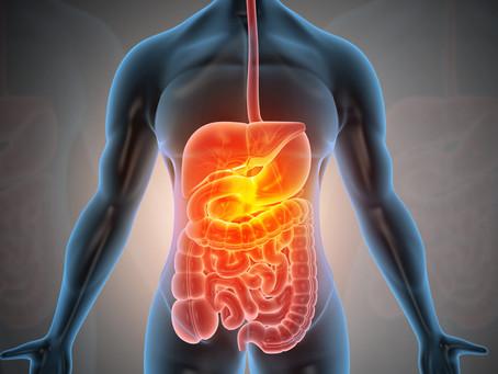 Câncer do Aparelho Digestivo: um alerta para a mudança no estilo de vida!