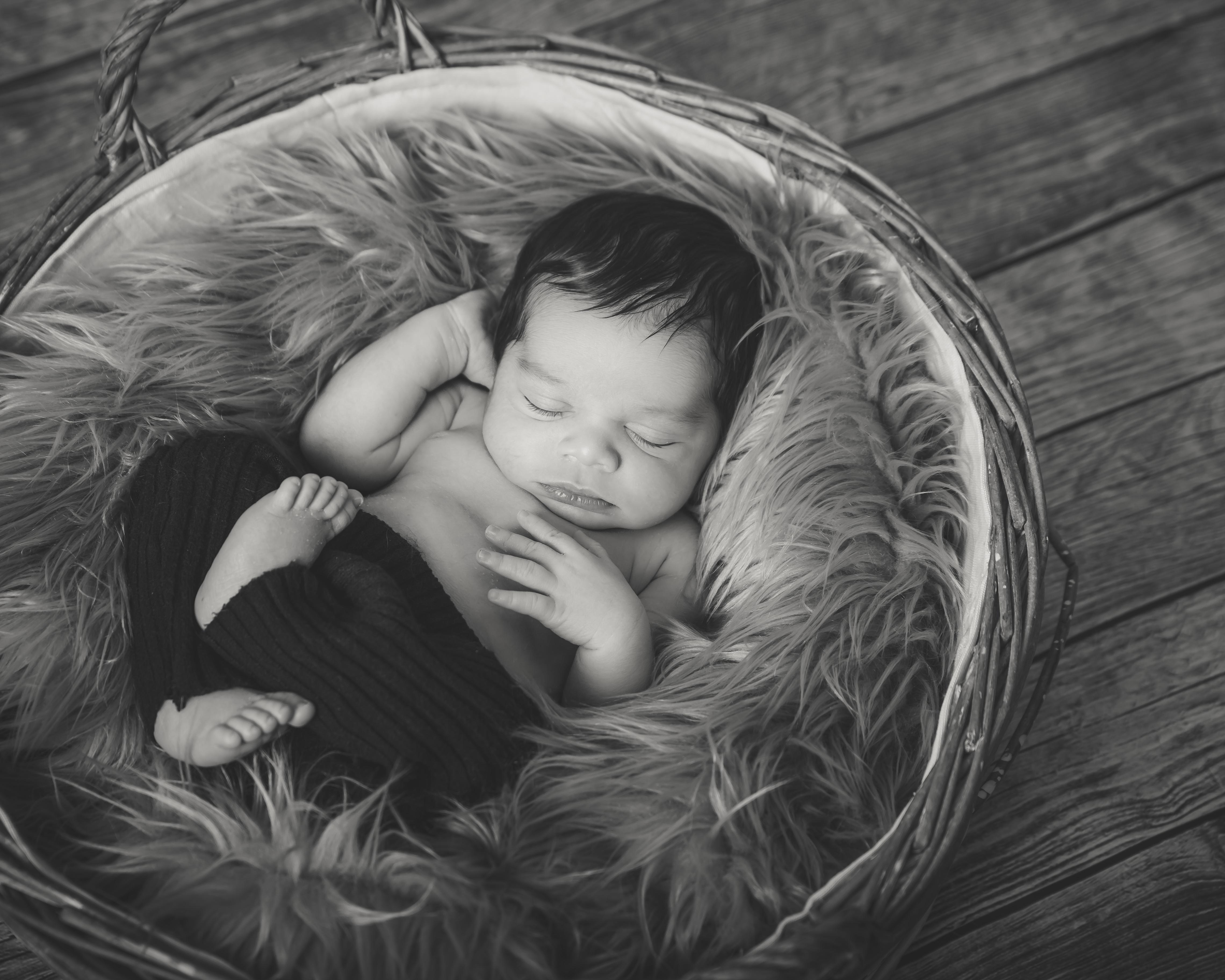 Photographer Newborn Timmins
